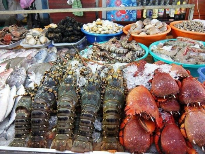 1 ngày ở Nha Trang nên đi đâu